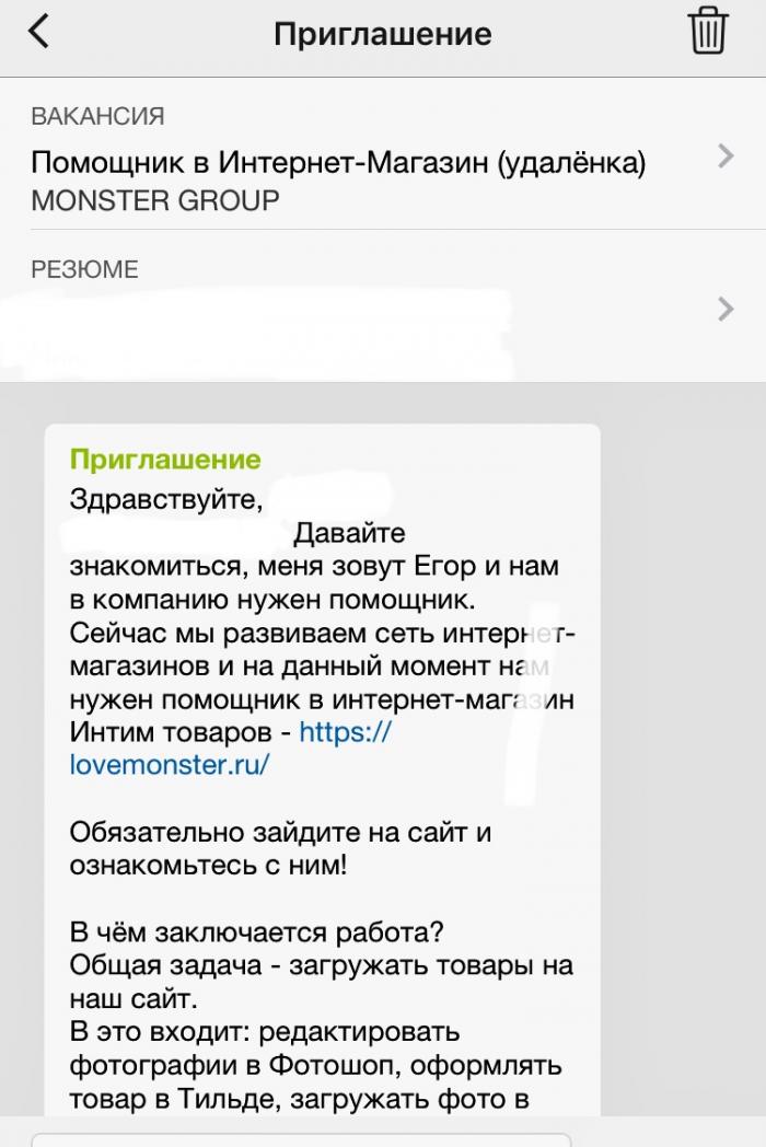 Monster Group (ИП СТЕПАНОВ ЕГОР АНАТОЛЬЕВИЧ)